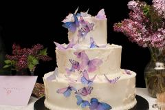The-Cascade-Butterfly-Cake